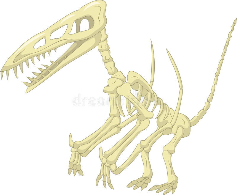 Шарж скелета Pteronodon иллюстрация штока
