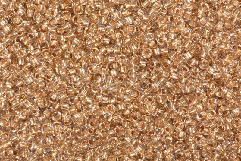 Шарики семени cиенны стоковая фотография rf