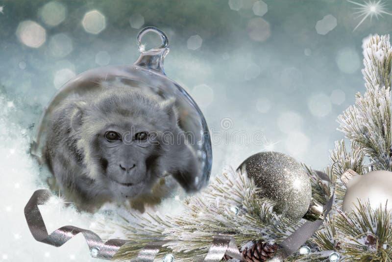 Шарик рождества с обезьяной на снеге стоковые изображения