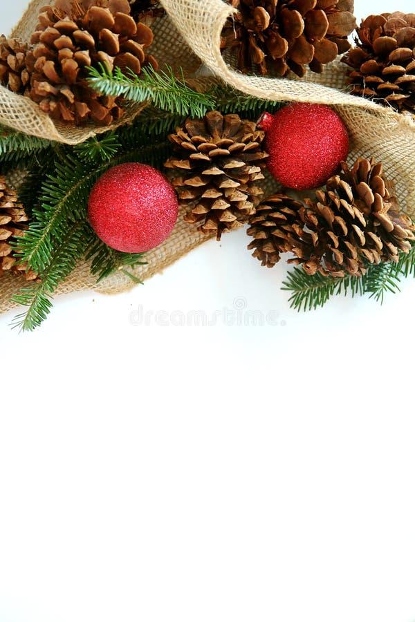 Шарик рождества, Pinecone и вечнозеленая граница изолированные на белизне стоковые фотографии rf