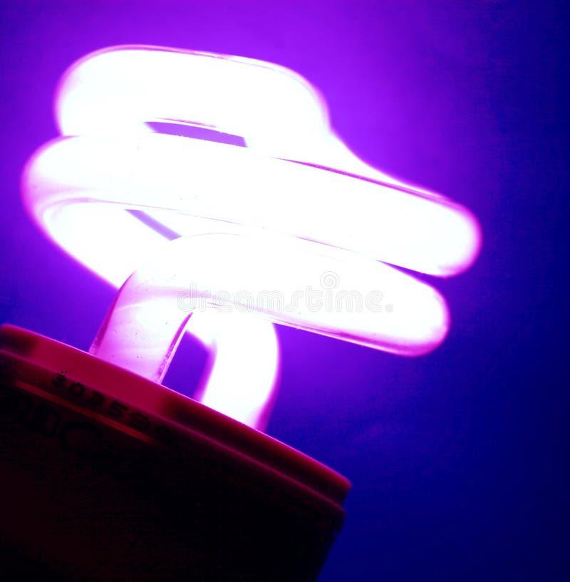 Шарик CFL стоковые фото