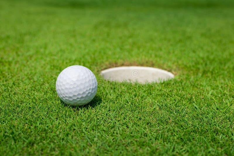 Шар для игры в гольф лежит на зеленом цвете стоковое изображение rf