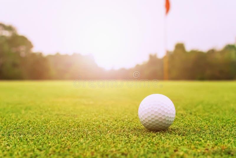 шар для игры в гольф на зеленой траве с восходом солнца стоковая фотография rf