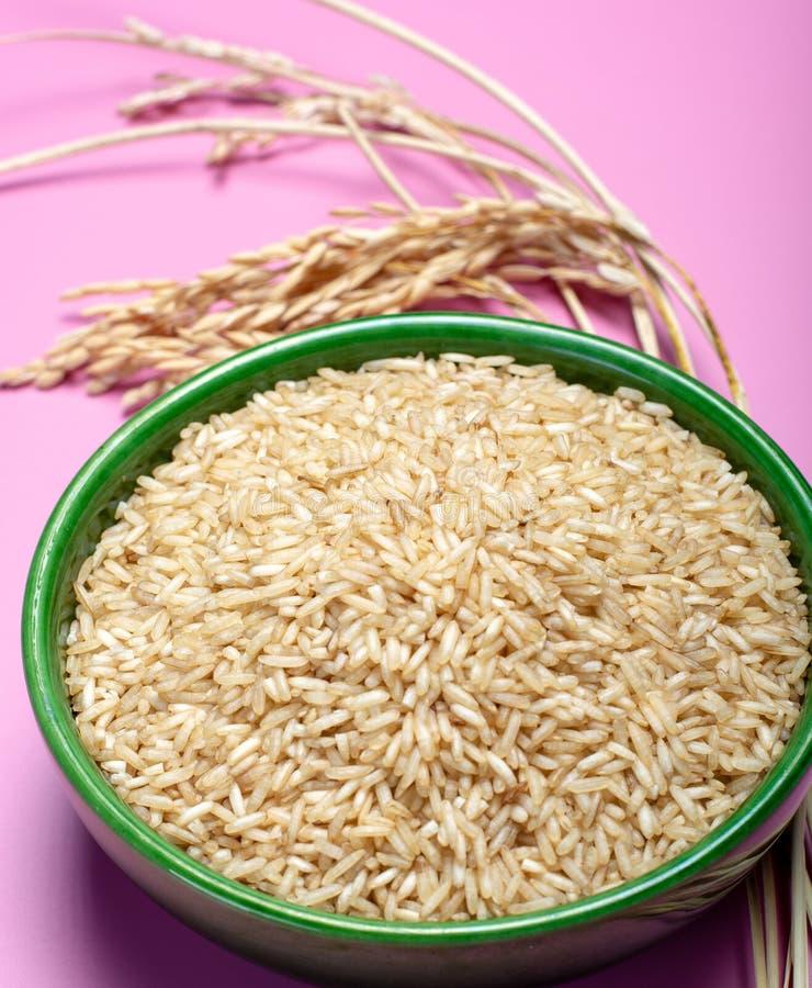 Шар с органическим коричневым сырым рисом и высушенной рисовой посадкой на pi стоковая фотография