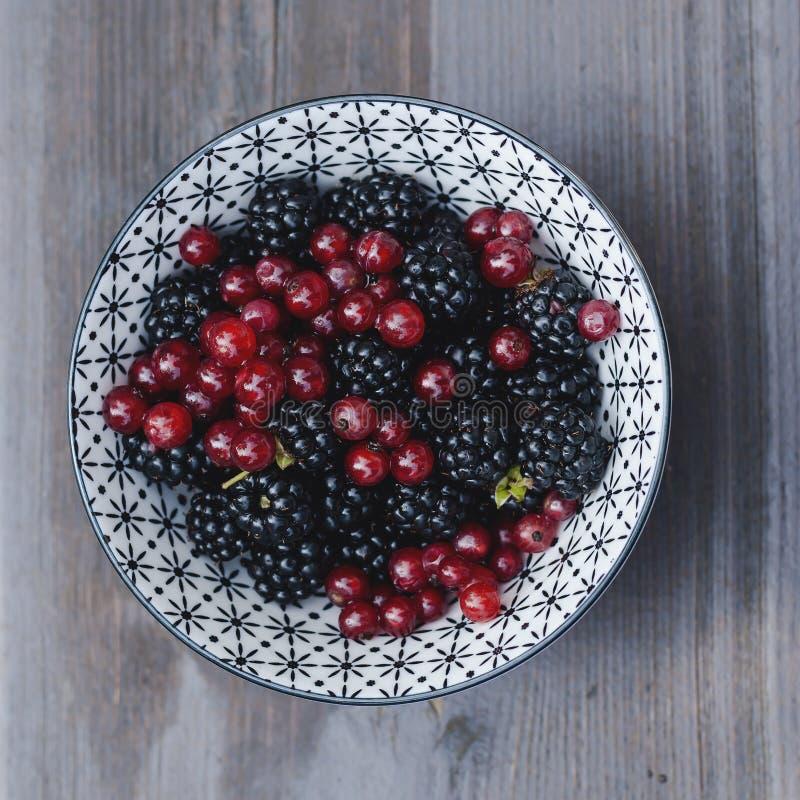 Шар с одичалыми backberries и красными смородинами стоковое изображение rf