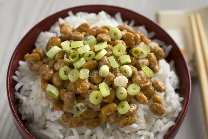 Шар с традиционными японскими заквашенными соями вызвал natto стоковые фотографии rf
