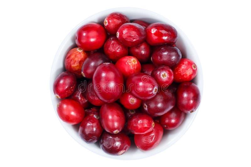 Шар ягод клюквы клюкв сверху изолированный на белизне стоковые фото