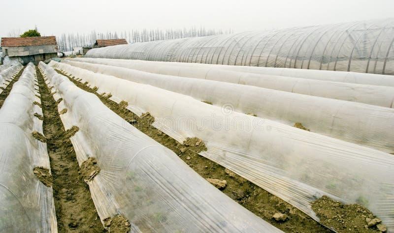шатер 2 ферм стоковая фотография rf