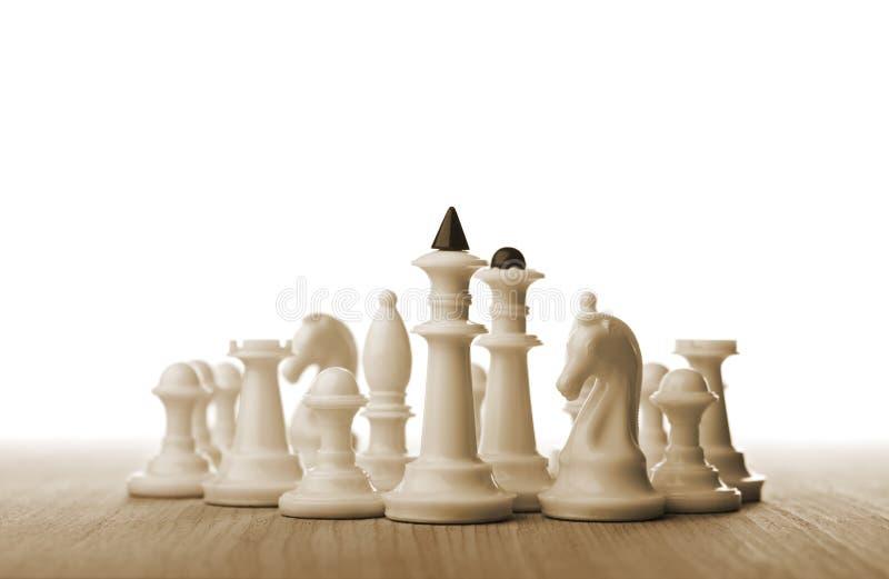 Шахматные фигуры стоковые изображения rf