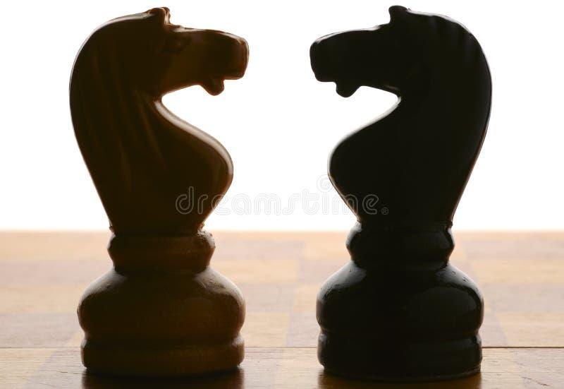 шахмат knights силуэты стоковая фотография