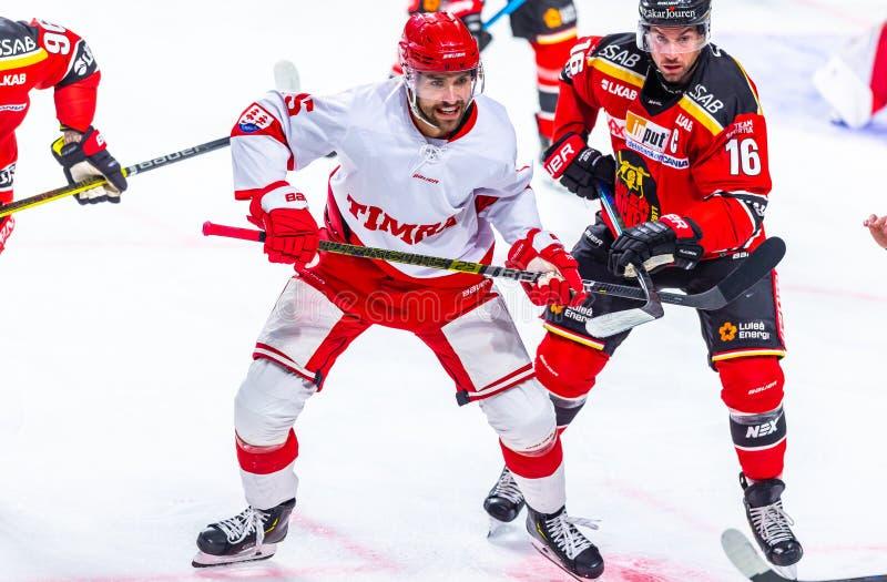 Шведская хоккейная лига SHL, хоккей Lulea против Timra IK - РЕДАКЦИОННОЕ 2-0 Lulea стоковое изображение