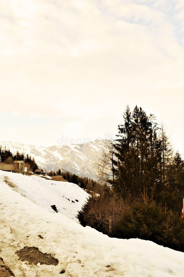 Швейцарец Альпы и ландшафт весны стоковые фотографии rf