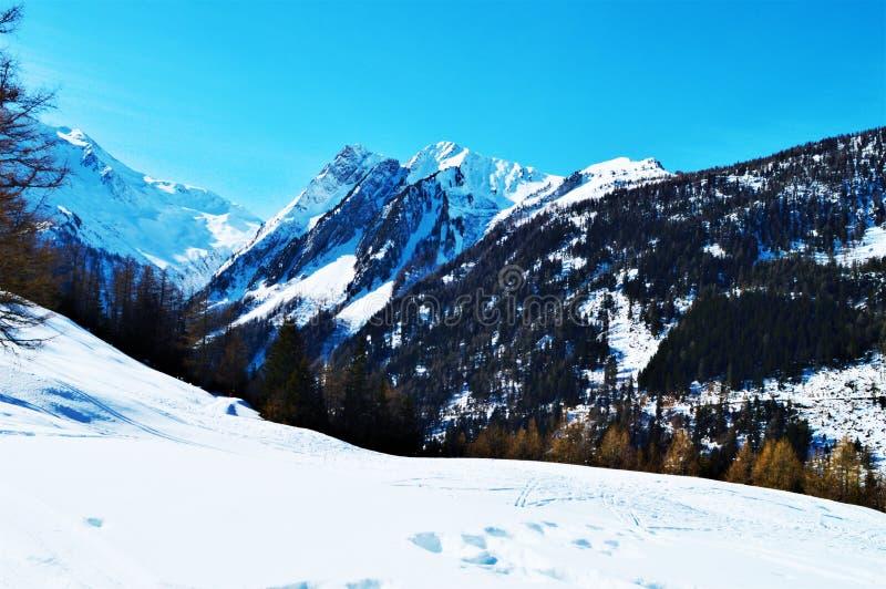 Швейцарец Альпы и холмы под снегом стоковые фото