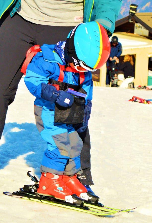 швейцарец alps катаясь на лыжах стоковое изображение rf