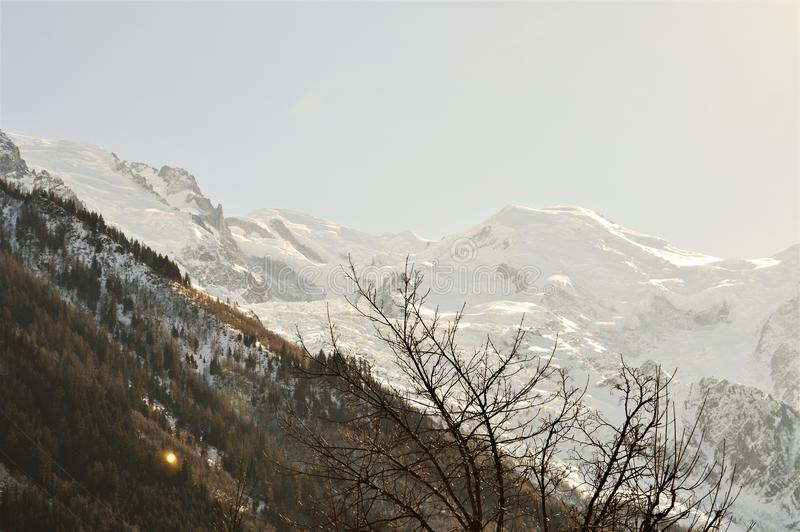 Швейцария и красивые саммиты Альпов под снегом стоковое изображение