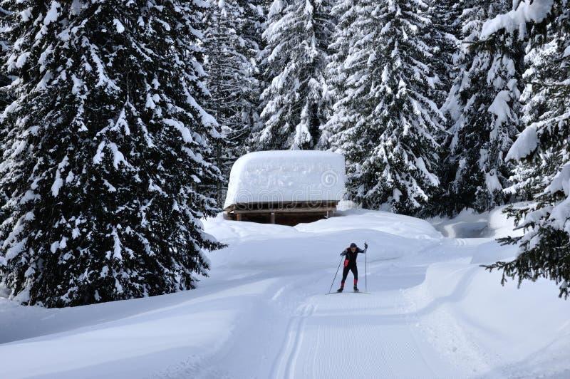 Швейцарские беговые лыжи горных вершин стоковое изображение rf