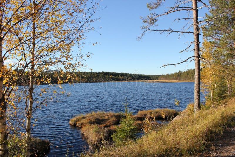 Шведское озеро стоковые фотографии rf