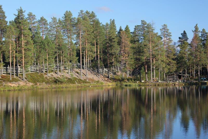 Шведское озеро стоковое изображение