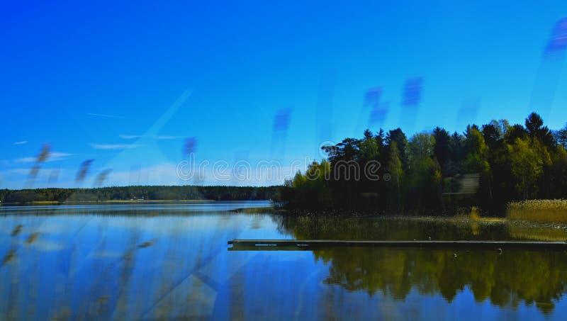 Шведское outisde природы wondow автомобиля стоковое изображение