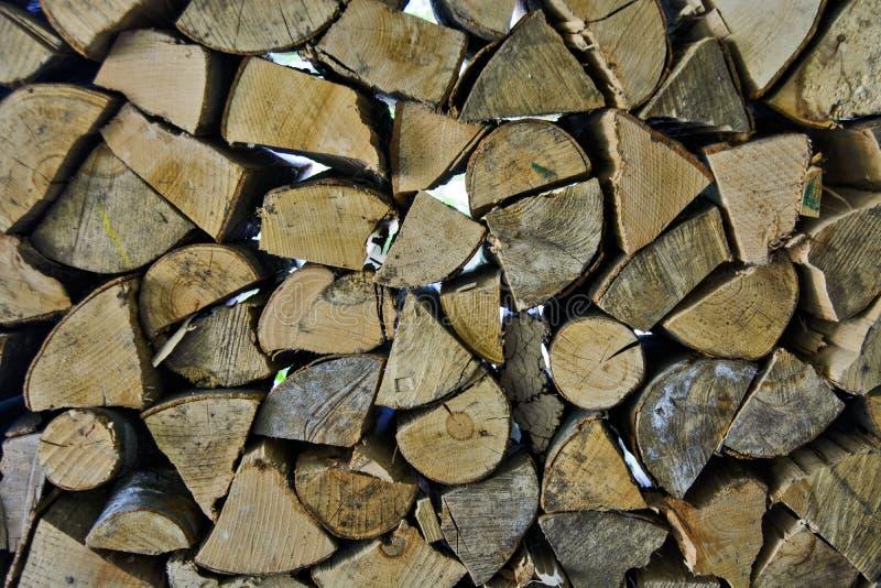 Швырок в домочадцах стоковое изображение rf