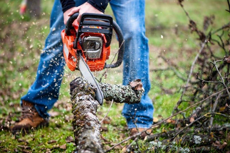 Швырок нарезания зубчатых колес работника Lumberjack полностью защитный стоковые изображения