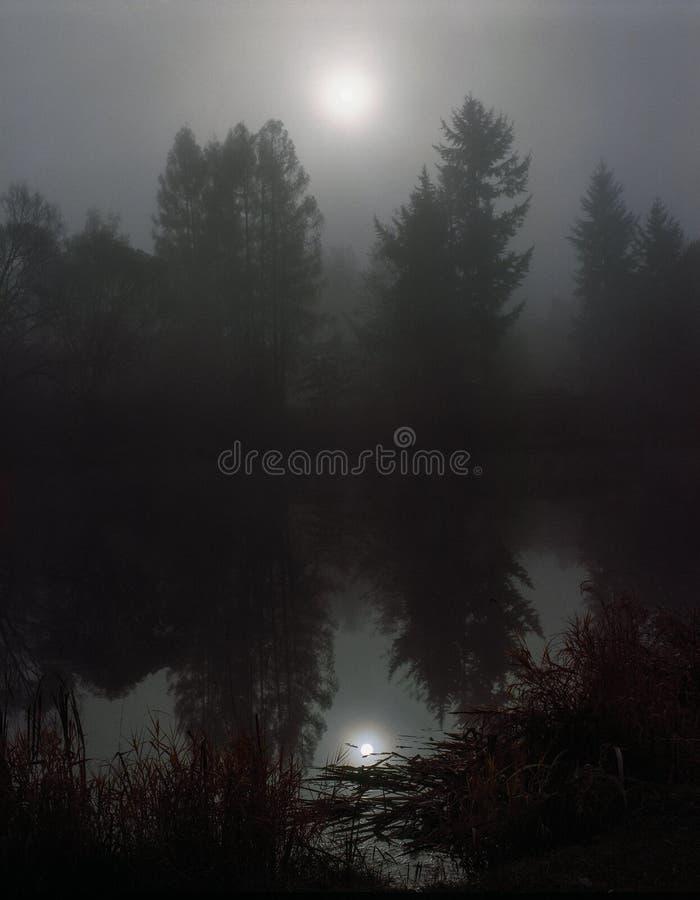 Шедевр тумана стоковая фотография