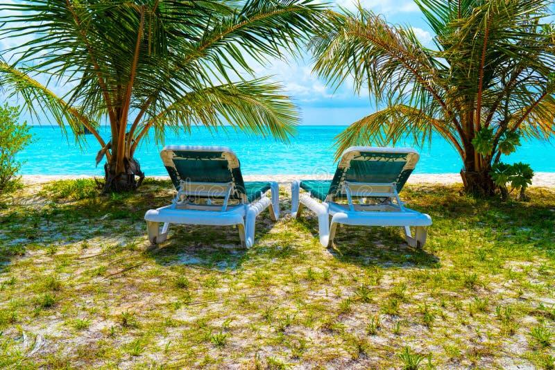 Шезлонги на красивом тропическом пляже на Мальдивах стоковое фото rf