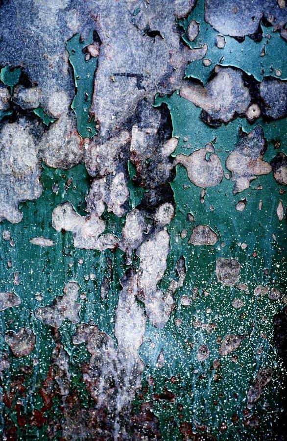 шелушение краски металла двери стоковое фото