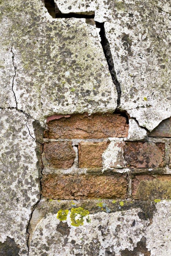 Шелушиться представляет на здании стоковые изображения rf