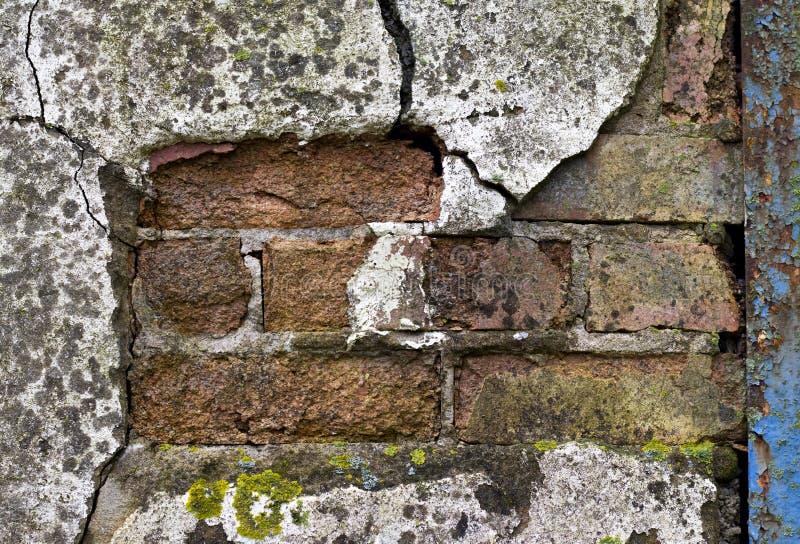 Шелушиться представляет на здании стоковое изображение