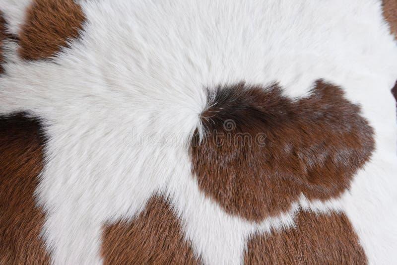 шерсть ковра стоковое фото rf