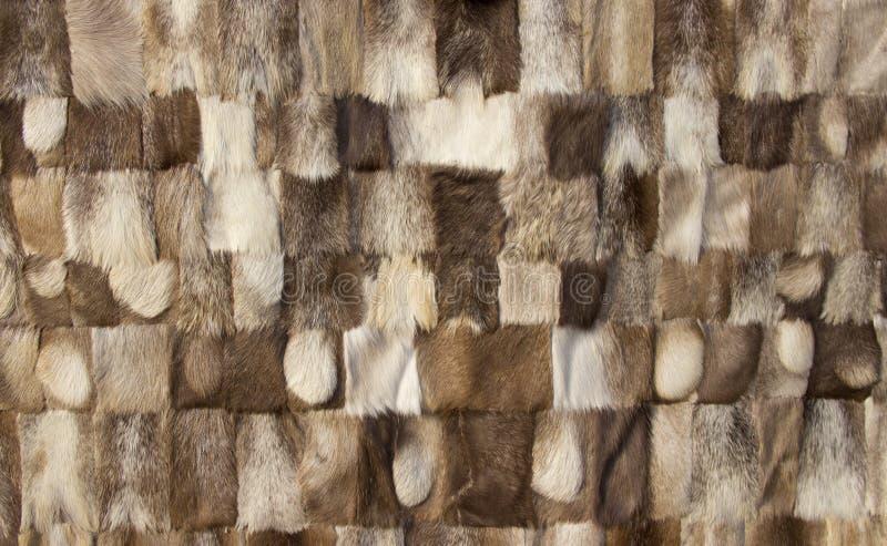 шерсть предпосылки естественная стоковое изображение