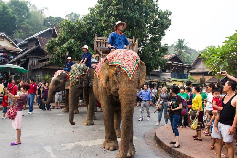 Шествие слона на Новый Год 2014 Lao в Luang Prabang, Лаосе стоковые фото