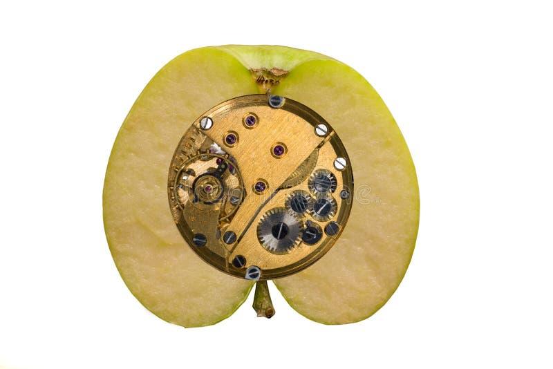 шестерня машины яблока стоковая фотография