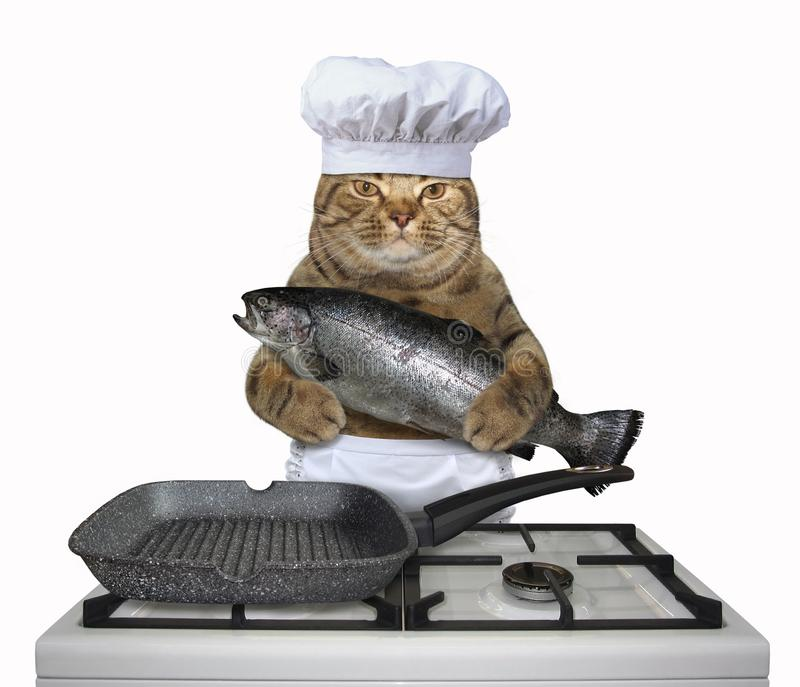 Шеф-повар кота держит большую форель стоковое фото