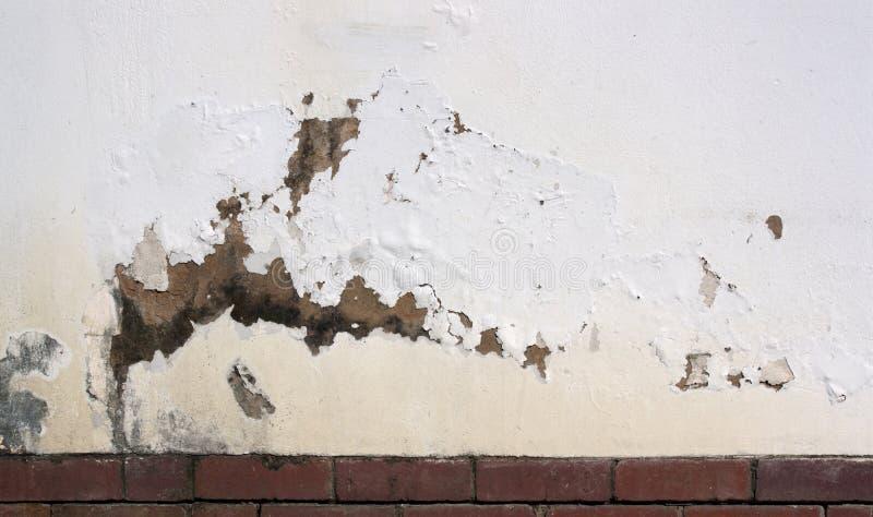 Шелушась краска на внешней стене показывая поднимая сырость стоковая фотография