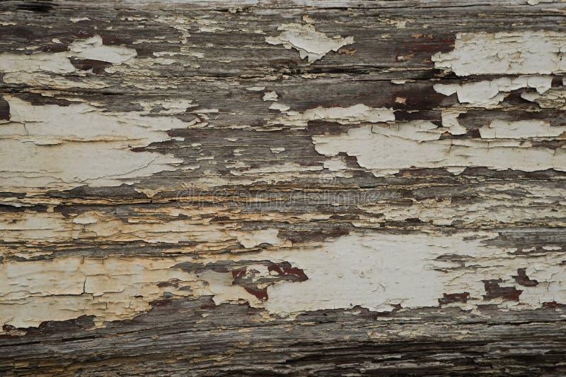 Шелушась краска 3 стоковое изображение rf