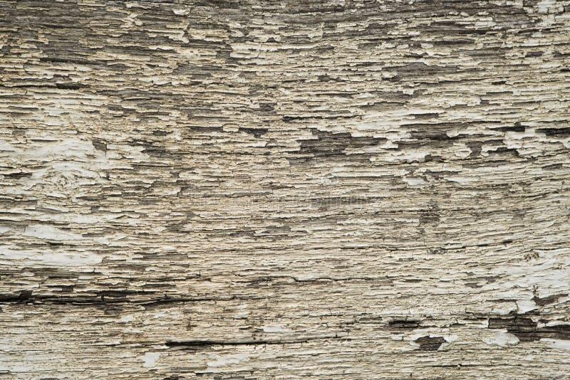 Шелушась краска 7 стоковое изображение