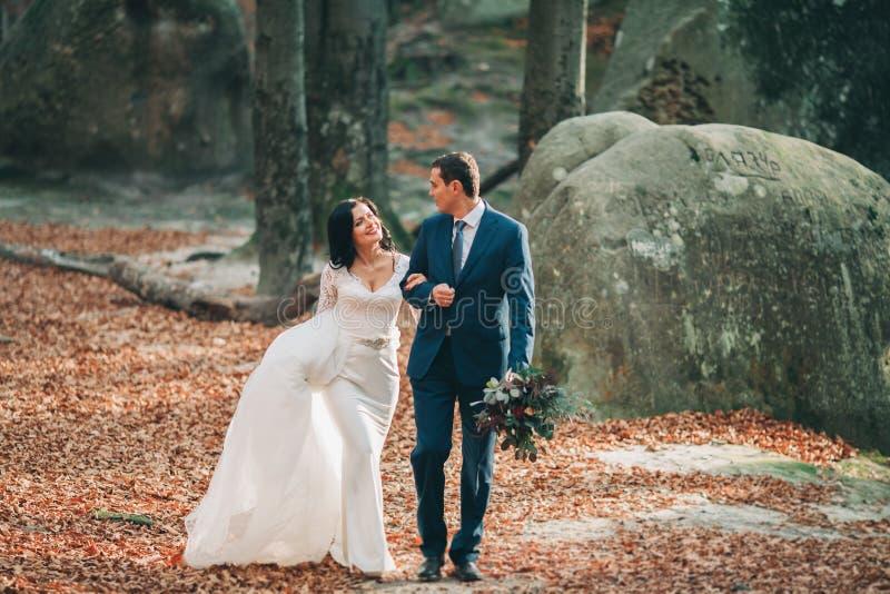 Шикарная невеста, groom целуя и обнимая около скал с сногсшибательными взглядами стоковая фотография
