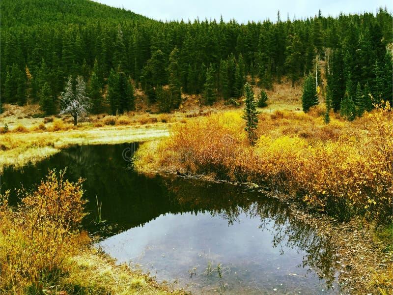 Шикарное Колорадо стоковое изображение