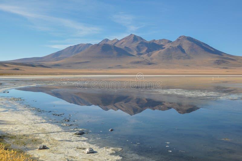 Шикарные ландшафты Sur Lipez, южной Боливии стоковые изображения rf