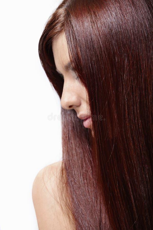 шикарные волосы стоковая фотография