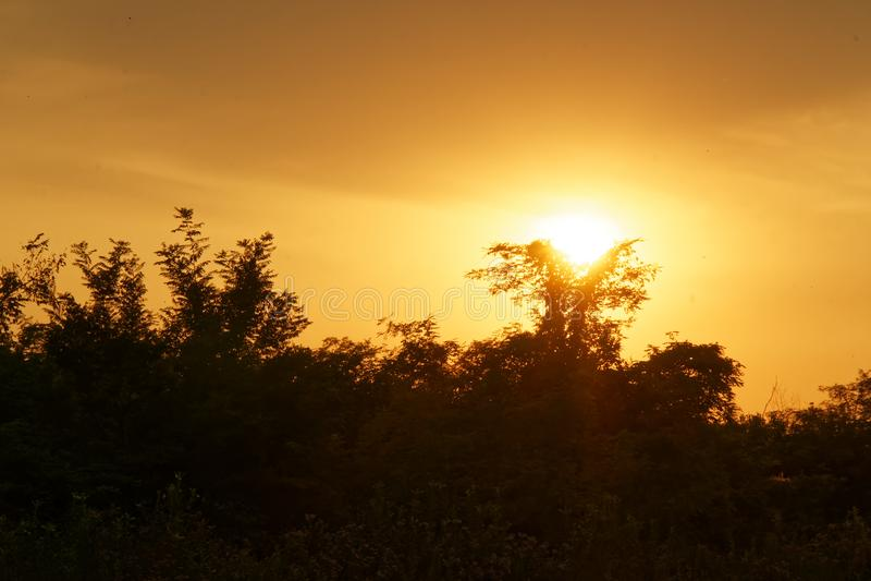 Шикарный восход солнца в Африке, сафари, Эфиопия стоковые фото
