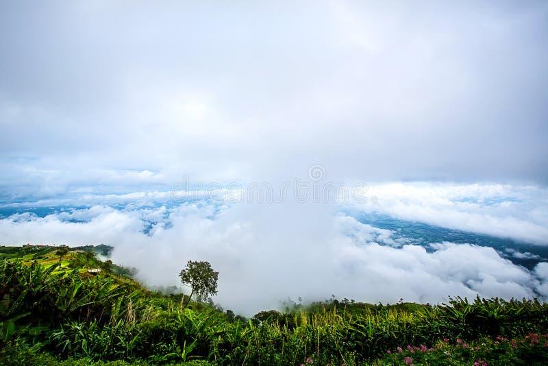 шикарный ландшафт голубого неба, белого облака и зеленого холма стоковые фото
