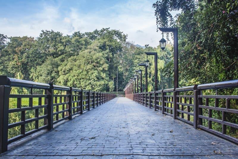 Шикарный мост в горизонт, окруженный пышной растительностью и деревьями в резервуаре Ang Kaew, Чиангмай r стоковые фото