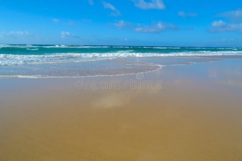Шикарный пляж с белым песком пляжа Cofete, кристалла - ясного моря, oc стоковое изображение rf