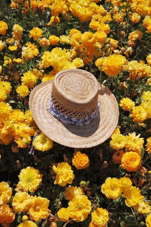 Шикарный шлем сторновки выйден туристом стоковые изображения rf