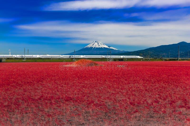 Шинкансен: поезд с пулями проходит через гору Фудзи, Йосивара, префектура Сидзуока, Япония стоковая фотография rf