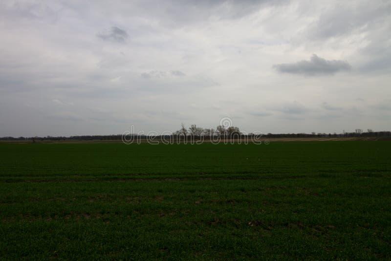 Широкий взгляд на обрабатываемых землях под облачным небом в emsland Германии rhede стоковые изображения rf