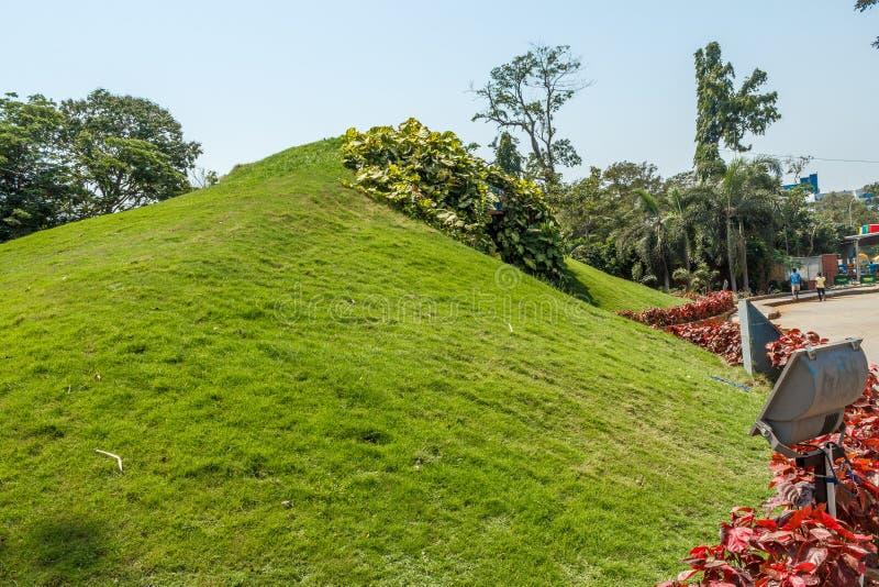 Широкий взгляд зеленых сада и тропы, Ченнаи, Индии, 1-ое апреля 2017 стоковые изображения